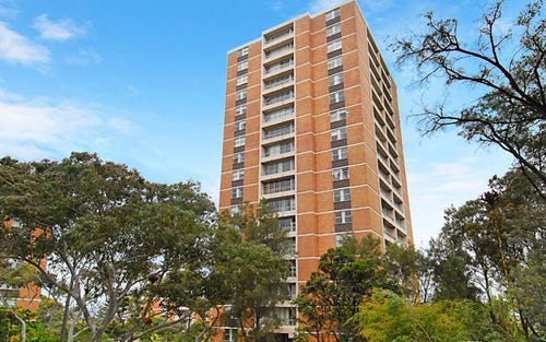 131/69 St. Marks Road, Randwick NSW
