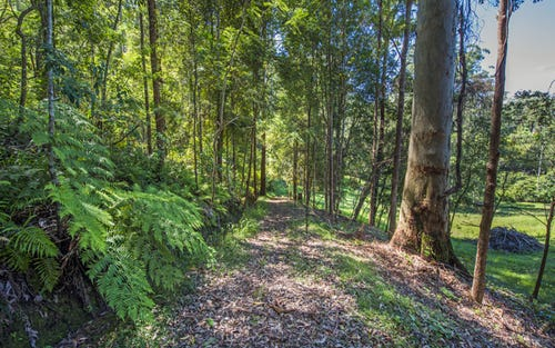 94 Scotchman Road, Bellingen NSW 2454