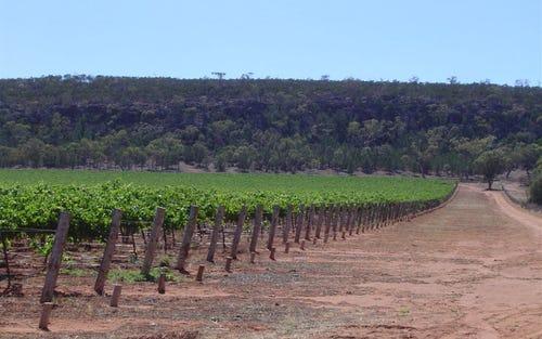 Cocoparra Vineyard, Rankin Springs Road, Myall Park NSW 2681