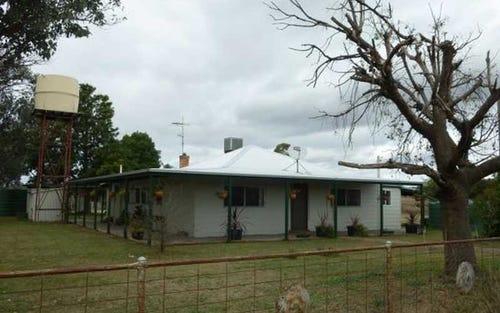 427 Racecourse Road, Somerton NSW 2340