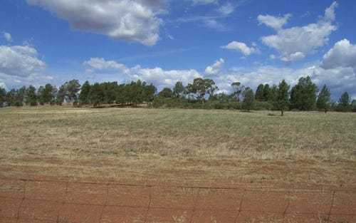 0 Cons Lane, Parkes NSW 2870