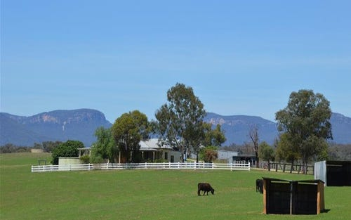 1 Port Macquarie Road, Rylstone NSW 2849
