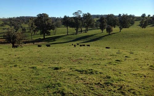 Lot 4 Tooma Road, Tumbarumba NSW 2653