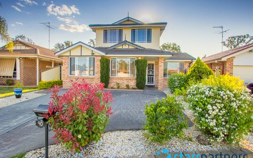 90 Olympus Drive, St Clair NSW 2759