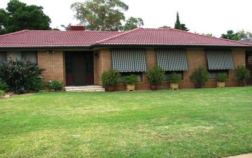 8 Japonica, Narrandera NSW 2700