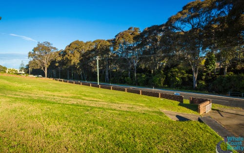 Lot 51, Wilcocks Avenue, Narooma NSW 2546