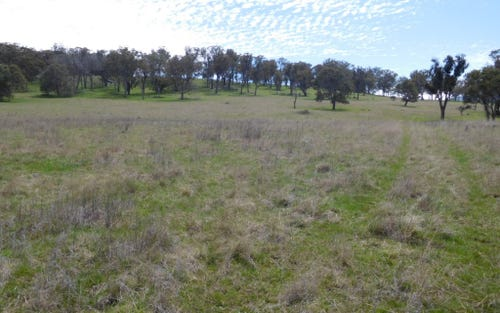 Lot 7, 1014 Boorolong Road, Armidale NSW 2350