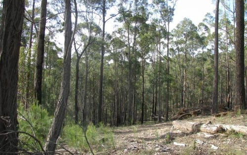 Lot 14, Lot 14 Short Cut Road, Pambula NSW 2549