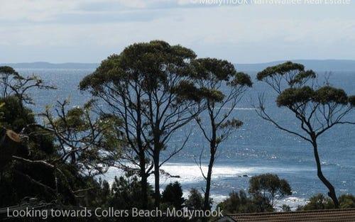 4/8 Buchan St, Mollymook NSW 2539