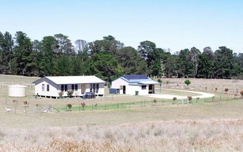 50 HAYNES LANE, Kentucky NSW 2354
