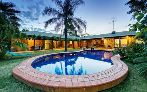 655 Dights Forest Road, Table Top NSW