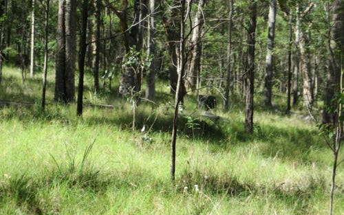 Lot 5 Long Gully Road, Drake NSW 2469