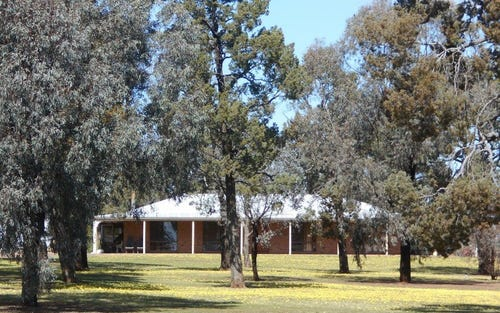 196 Ratcliffs Rd, Berrigan NSW 2712