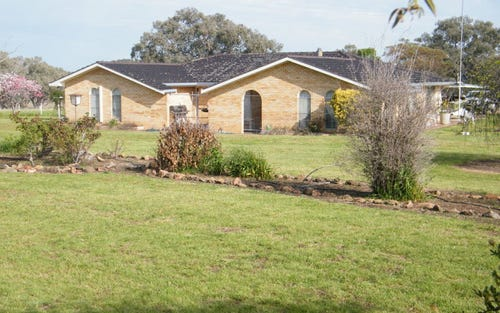 75 Bells Gate Road, Quirindi NSW 2343