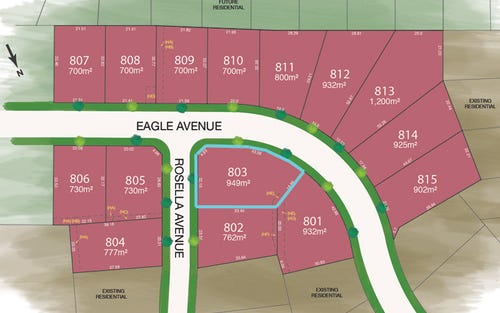 Lot 803 Eagle Avenue, Tamworth NSW 2340