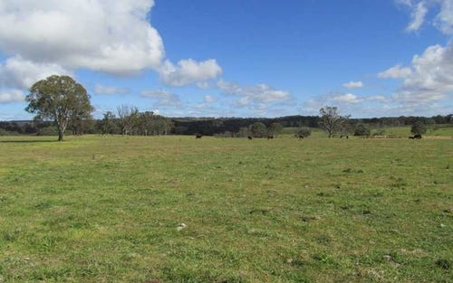 Mt Lindesay Road, Liston NSW 2372