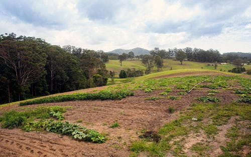 Lot 576 Wirrimbi Road, Newee Creek NSW 2447