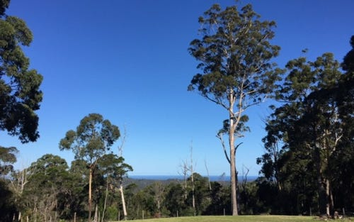 Lot 3, 730 Mumbulla Creek Road, Tanja NSW 2550