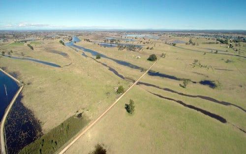 53 Phelps Lane, Cowper NSW 2460
