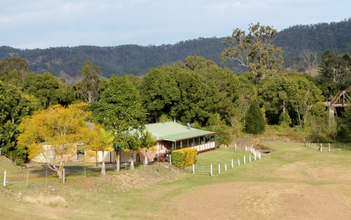 99 Lynches Creek Road, Wiangaree, Kyogle NSW 2474