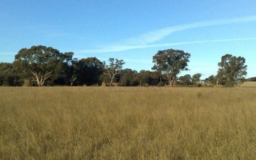 Lot 9 Werribee Estate, Premer NSW 2381