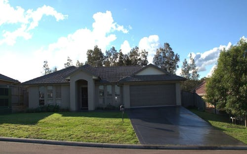 4 Poplar Level Terrace, East Branxton NSW 2335