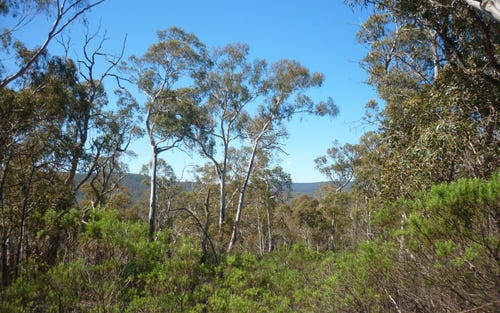 Lot 86 Undoo Fire Trail, Countegany NSW 2630