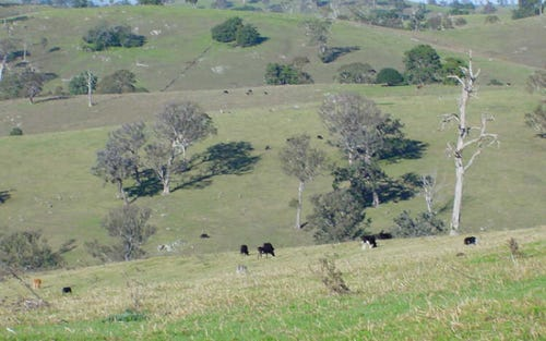 Lot 613 Peak Hill Road, Bega NSW 2550