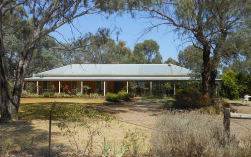 125 Robinson Road, Young NSW 2594