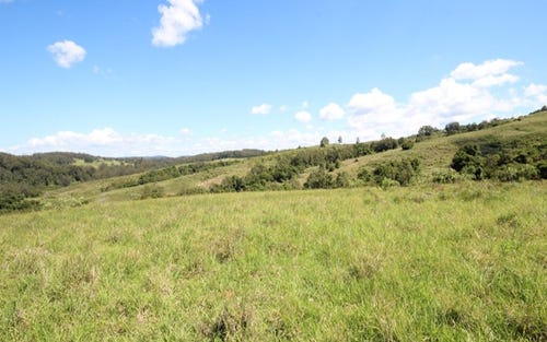 Lot 29 Tilbaroo Road, Elands NSW 2429