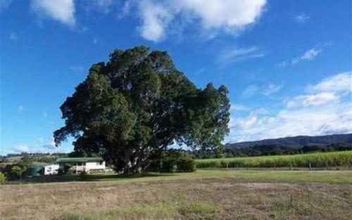 256 Main Arm Road, Mullumbimby NSW 2482