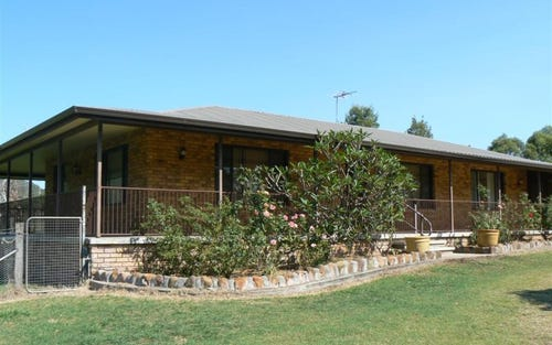 408 Sandy Creek Road, Muswellbrook NSW 2333