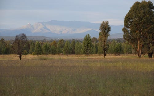 Lot 1, 3 & 4, 161 Gun Club Road, Narrabri NSW 2390