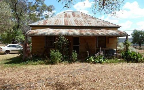 65 Snelsons Lane, Gulgong NSW 2852
