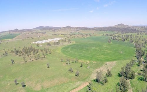 Moana Farm, Somerton NSW 2340