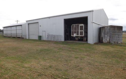 Lot 113 Haggarty's Lane, Singleton NSW 2330