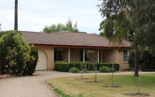 202 River Road, Forbes NSW 2871