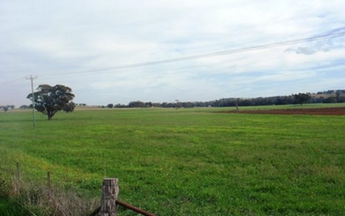 Lot 8, Rivers Rd, Canowindra NSW 2804
