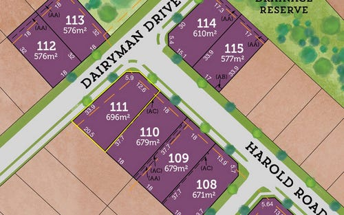 Lot 111 / 42 Rees James Road, Raymond Terrace NSW 2324