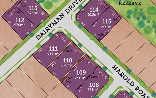 Lot 110 / 42 Rees James Road, Raymond Terrace NSW 2324