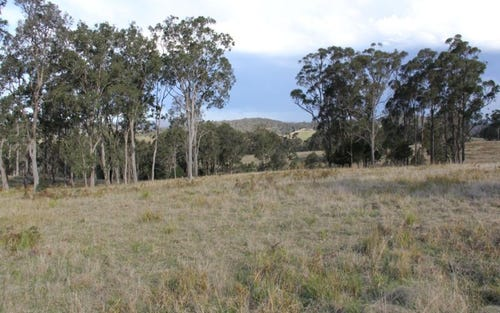 Lot 2 Wellington Lookout Road, Bryans Gap NSW 2372