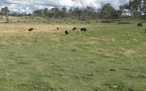 Address available on request, Uralla NSW 2358