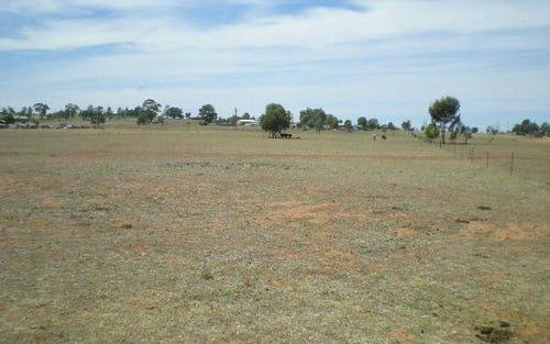 Lot Part, Part/170 Cons Lane, Parkes NSW 2870