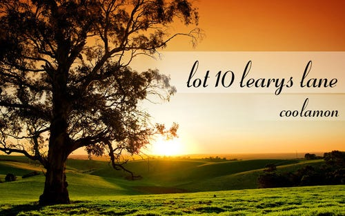 Lot 10, Learys Lane, Coolamon NSW 2701