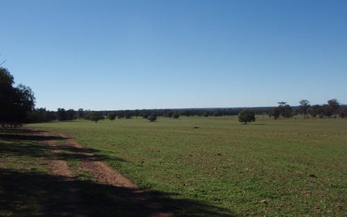 San Josef, Trundle NSW 2875