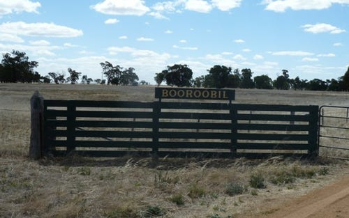 N/A Booroobil Road, Bunnaloo NSW 2731