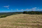 6 Browns Crescent, Mcleods Shoot NSW