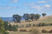 154 Favell Road, Shadforth NSW