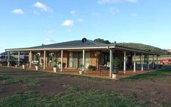 'Bordens' Palings Yard Loop, Cudal NSW