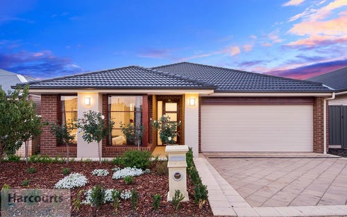 43 The Avenue, Blakeview SA 5114